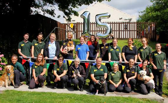 Dogs Trust staff celebrate 15 years at Pen-y-Fai